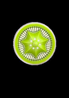 预购美国官网代购Citrus Zinger 柠檬杯