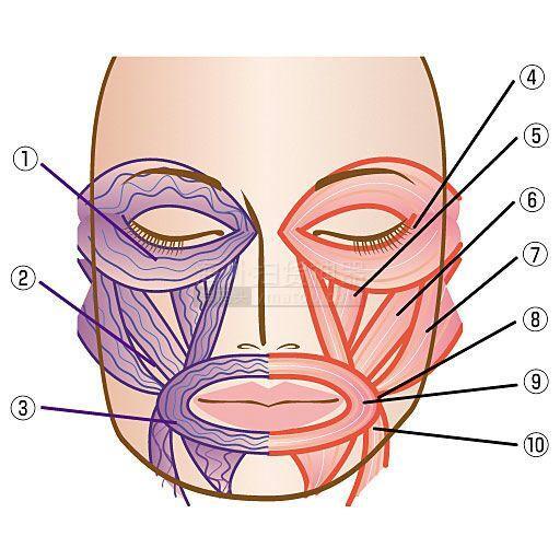 日本直邮v嘴角嘴角提升女生面罩防止松弛面部穿脚什么筋肉瘦凉鞋图片